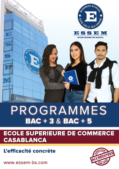 ESSEM brochures